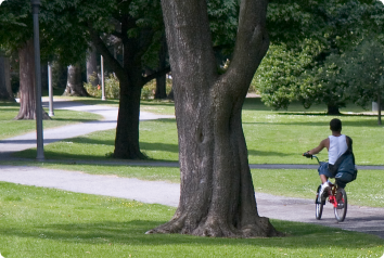 A pre-teen waiting in foster care to be adopted bikes through the park.
